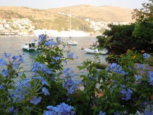 Apartments Busola, Ferienwohnungen  Dubrovnik - big - 23
