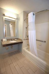 Hampton Inn Sandusky-Central, Hotels  Sandusky - big - 13