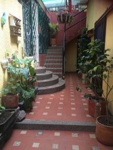Casa las Violetas, Гостевые дома  Богота - big - 18