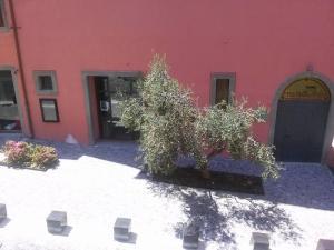Ecco Marino Casa Vacanze, Apartmanok  Marino - big - 9