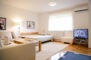 Guest Apartment Visoko, Apartments  Visoko - big - 7