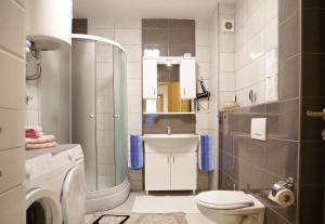 Guest Apartment Visoko, Apartments  Visoko - big - 21