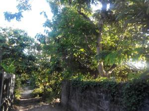 Carlyn Guesthouse, Penziony  Jimbaran - big - 23