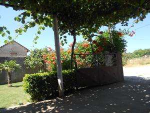 Guest House Luka i Ana-Marija - фото 2