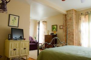 Harrington House - Accommodation - Milford