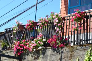 Colores del Puerto, Bed and breakfasts  Puerto Montt - big - 28