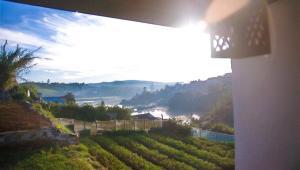 Gregory Lake Inn, Inns  Nuwara Eliya - big - 1