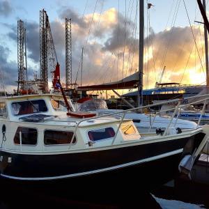 Boat Motus
