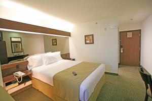 Microtel Inn and Suites by Wyndham Juarez, Hotel  Ciudad Juárez - big - 10