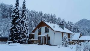 Serebryanniy ruchey cottage