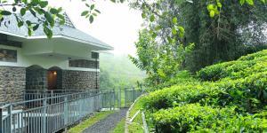 Misty Mountain Plantation Resort, Hotels  Pīrmed - big - 8
