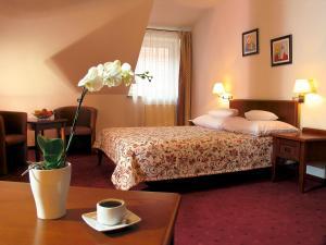 Hotel Relaks Wellness & SPA, Hotel  Karpacz - big - 11