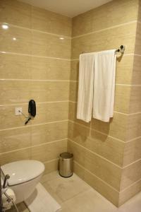 Hotel HBL International, Hotels  Gurgaon - big - 8