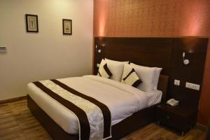 Hotel HBL International, Hotels  Gurgaon - big - 4