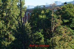 Апартаменты на Ленинградской - фото 15