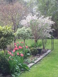 Gartenapartment in Stadtvilla