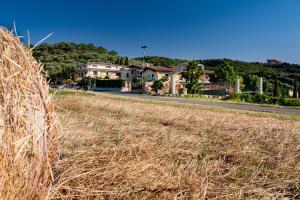 Villa Santa Caterina, Case di campagna  Montalto Uffugo - big - 38