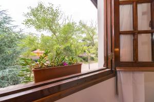 Cabañas Gonzalez, Lodges  Villa Gesell - big - 125