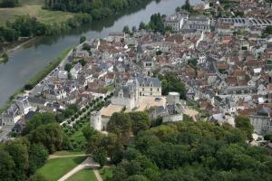 Aux Grilles Du Château, Holiday homes  Saint-Aignan - big - 16