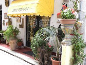 obrázek - Hotel Fernanda