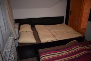 Apartment Borovnica