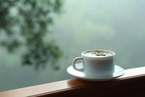 Misty Mountain Plantation Resort, Hotels  Pīrmed - big - 3