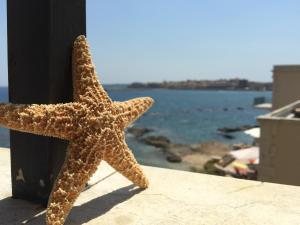 Stella Sul Mare
