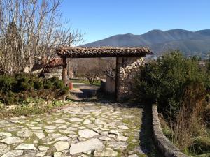 Villa Lila in Parnassos