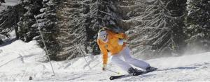 obrázek - Sciare in Trentino