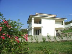 Apartment Bella Vista 1