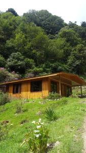 Hospedaje El Jaúl Providencia