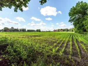 De Snoeibijl, Dovolenkové domy  Ruiselede - big - 16