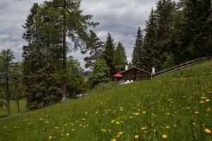 Berghütte Sommerstall