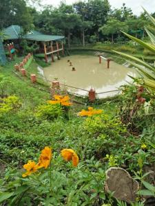 Mae Taeng Camping View Resort