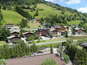 Apartment Iglsberg Charlotte, Apartments  Saalbach Hinterglemm - big - 21
