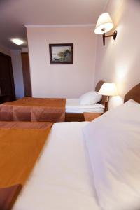Отель Гандвик - фото 10