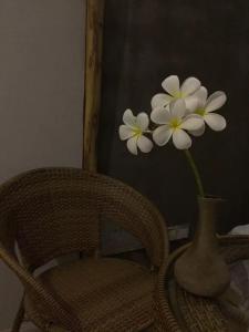 Jing Pu Plant Theme Hostel, Хостелы  Jinghong - big - 66