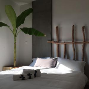 Jing Pu Plant Theme Hostel, Хостелы  Jinghong - big - 38