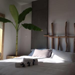 Jing Pu Plant Theme Hostel, Хостелы  Jinghong - big - 23
