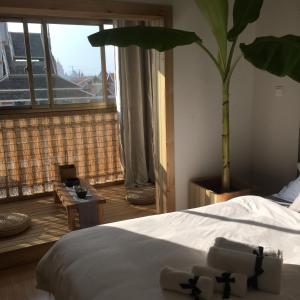 Jing Pu Plant Theme Hostel, Хостелы  Jinghong - big - 27
