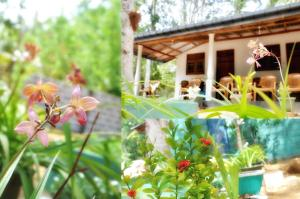 Secret River Side Safari Lodge