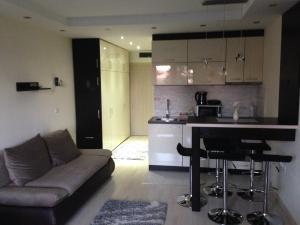 Apartments Vanja i Vrh, Ferienwohnungen  Kopaonik - big - 13