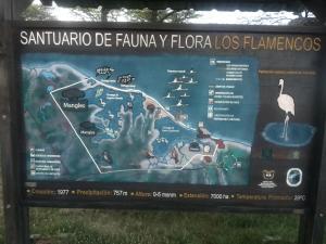 Hostal CQ Flamencos