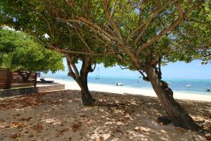 La Case Creole Beachfront Villa - , , Mauritius