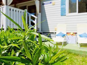 Holiday Home Lavanda, Prázdninové domy  Medulin - big - 32