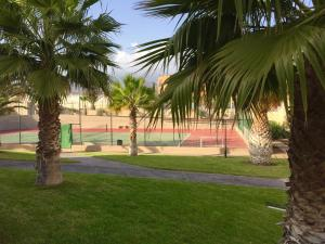 Villa Ocean Beach, Dovolenkové domy  El Médano - big - 28