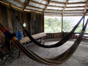 Rancho Hostal La Escondida Eco Park, Bed and breakfasts  Teopisca - big - 21