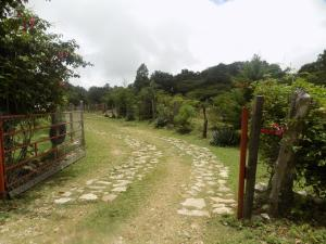 Rancho Hostal La Escondida Eco Park, Bed & Breakfast  Teopisca - big - 160