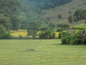 Rancho Hostal La Escondida Eco Park, Bed & Breakfast  Teopisca - big - 41