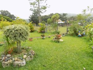 Rancho Hostal La Escondida Eco Park, Bed & Breakfast  Teopisca - big - 87